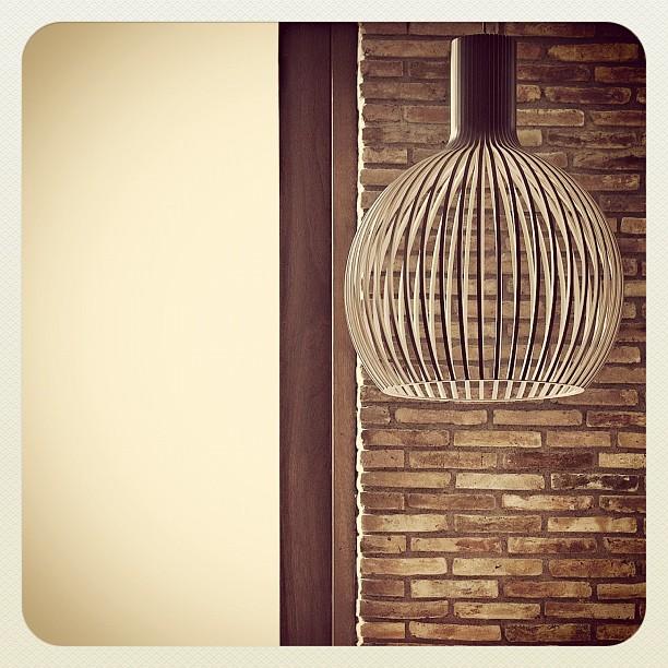 Octo lamp 420