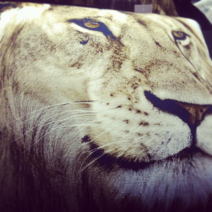 løvepute